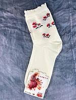 Шкарпетки жіночі молочні 37-41