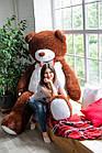 Огромный мягкий мишка Yarokuz Уильям 250 см Шоколадный, фото 4