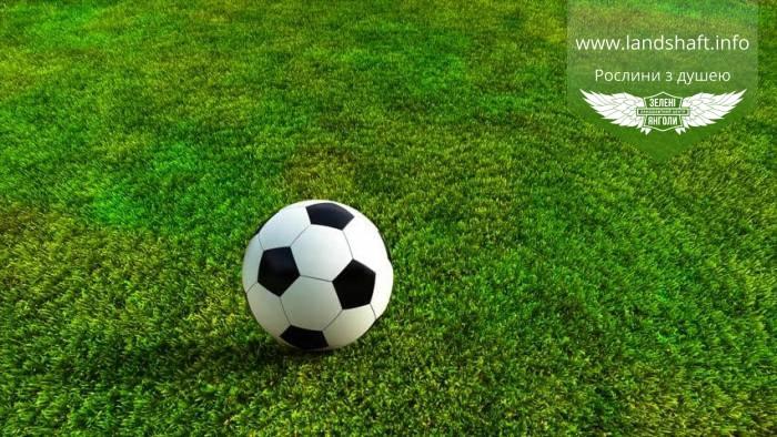 Трава газонна Гра та Спорт (НАСІННЯ),1кг,Трава газонна DLF 'PLAYGROUND' - Ігрова