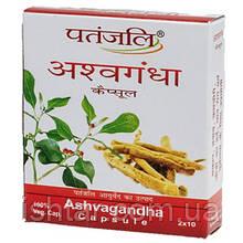 Ашвагандха/Ashvagandha, Patanjali, 20 капсул