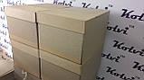 Папки-коробки архівні бокси, фото 5