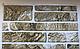 Декоративная Настенная Панель ПВХ Grace (Сланец зеленый), фото 2