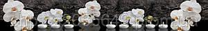 Стеклянный фартук для кухни - скинали Орхидея