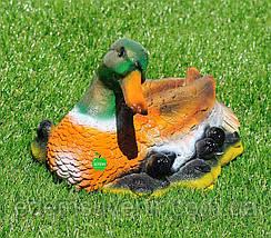 Садовая фигура Селезень кряквы и Утка с утятами, фото 2