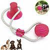 Игрушка для домашних животных с присоской + Подарок  Щетка душ для животных ! Dog toy rope PULL, фото 2
