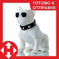 Беспроводная блютуз колонка в виде собаки (бульдога) белый, переносная музыкальная bluetooth, фото 1