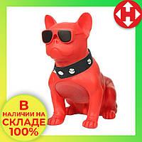 Распродажа! Музыкальная USB колонка собака (бульдог) красный, портативная bluetooth акустика c флешкой, фото 1