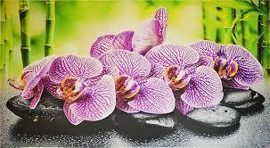 Декоративная Настенная Панель ПВХ GRACE (Орхидея Ванда)