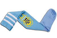 Футбольные гетры Аргентина