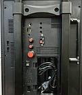 Колонка комбик Golon RX-2900 BT c Bluetooth и микрофоном, фото 5