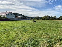 Продається земельна ділянка в с. Крехів