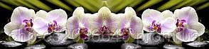 Стеклянный фартук для кухни - скинали Спа орхидея