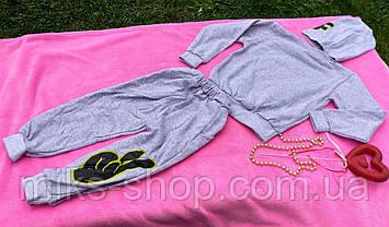 Дитячий теплий костюм тройка, фото 3