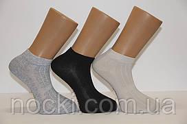 Мужские носки короткие с хлопка в сеточку Paul Mark Ф17 41-44 светлые ассорти