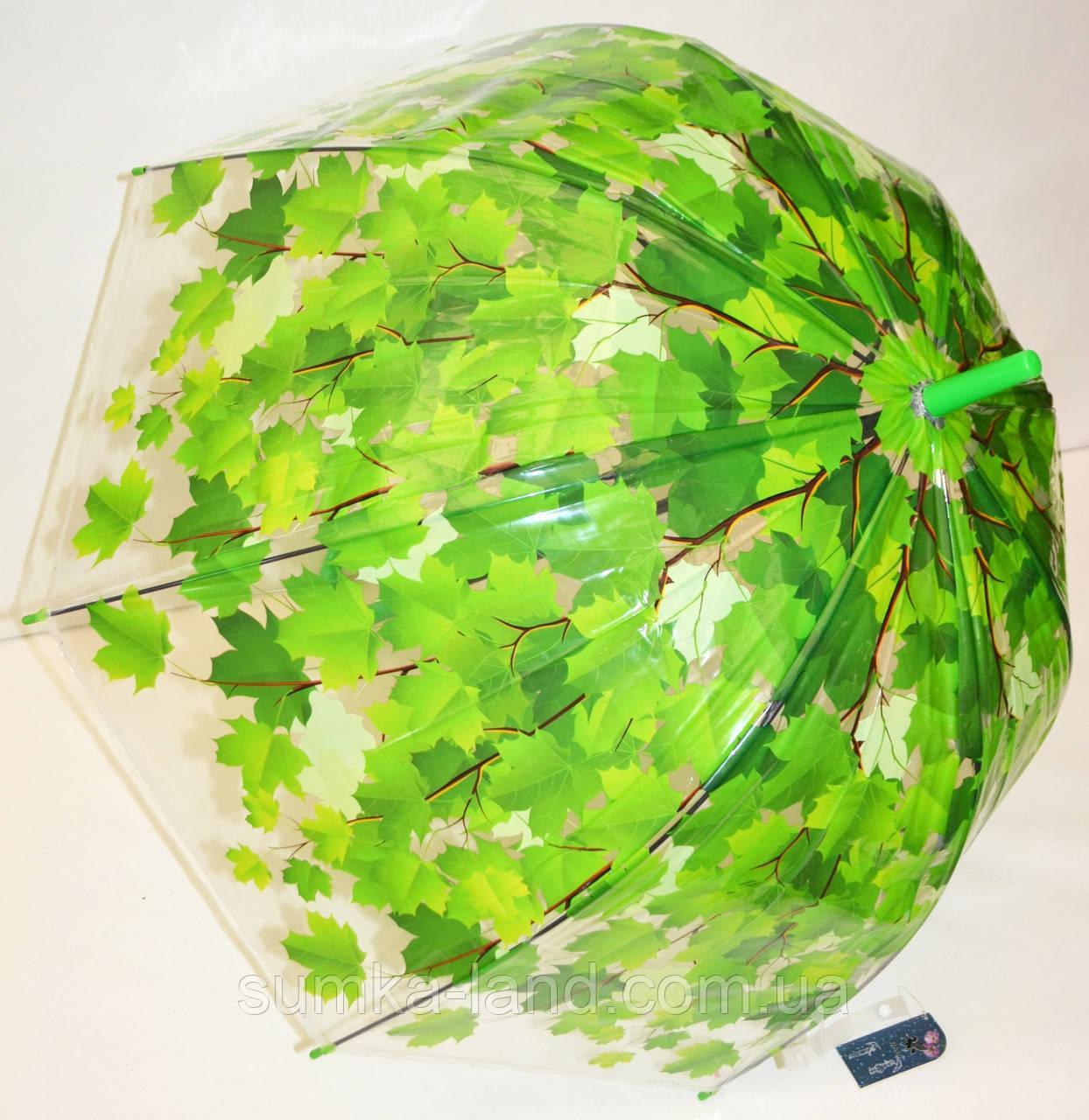 Детский силиконовый зонт-трость фирмы Fiaba на 8 спиц, прозрачный с салатовыми листьями