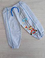 """Спортивные штаны на флисе на мальчика 1-4 года (2 цв.) """"MARI"""" купить оптом в Одессе на 7 км"""