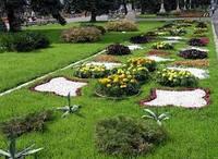 Цветы, озеленение, ландшафтный дизайн, дизайн сада, благоустройство (044) 227-30-95