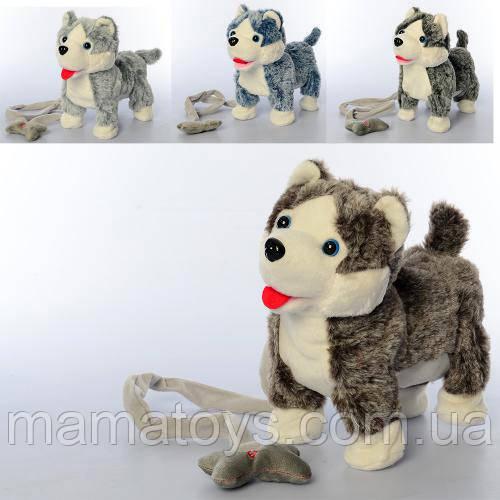 Інтерактивна Собака MP 2141 Хаскі 23 см З пультом дистанційного управління (поводок), , звук, ходить,