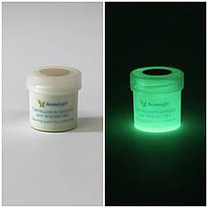 Светящаяся краска Acmelight для творчества и декора 1шт. (20 мл), классический (полупрозрачный) зеленый