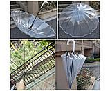 Зонт трость прозрачный  ., фото 3