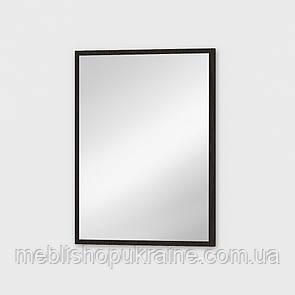 Щит с зеркалом