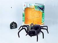Большой паук Черная Вдова (34см)  на радиоуправлении 779