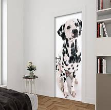 Виниловая наклейка на двери (самоклеющаяся ламинированная пленка) 200 х 65 см, фото 2