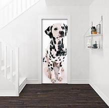 Виниловая наклейка на двери (самоклеющаяся ламинированная пленка) 200 х 65 см, фото 3