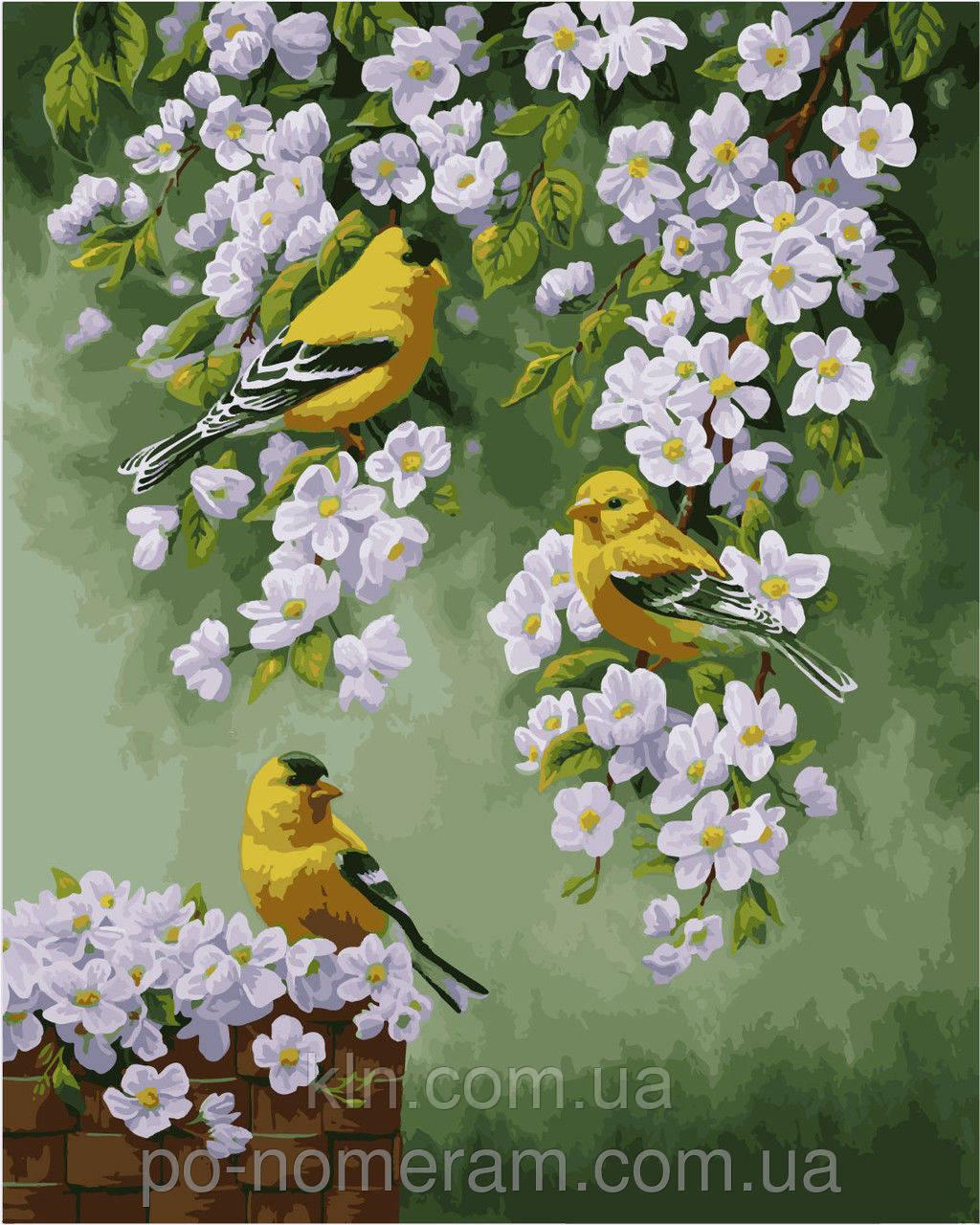 Картина по номерам Menglei Птицы на яблоне КН2427 40 х 50 см