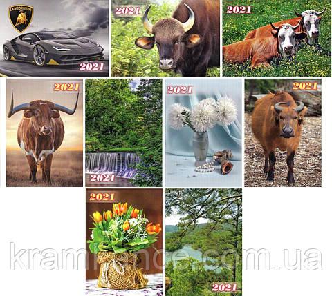 """Календар карманний 2021 рік """"MIX №2"""" (45шт) (7 х 10 см), фото 2"""