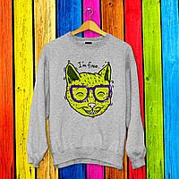 Свитшот с принтом Зеленый Кот в очках 2 Push IT