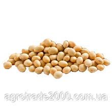 Соя Покупаем / buy soybeans
