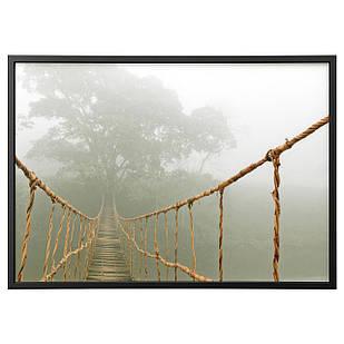 IKEA BJORKSTA (491.734.95) Изображение из рамы, путешествие через джунгли, серебро