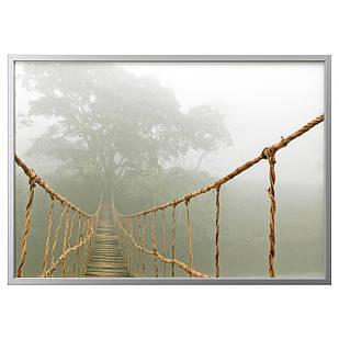 IKEA BJORKSTA (091.733.36) Изображение из рамы, путешествие через джунгли, серебро