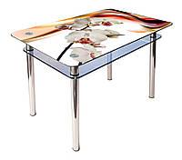 Стол обеденный стеклянный КС-1 90х60 (фотопечать №142) (Антоник ТМ)