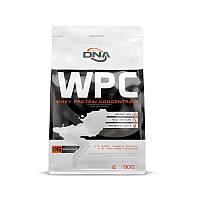 Протеин DNA Supps WPC, 900 грамм Клубника