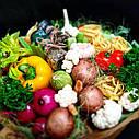 Овочевий мегабукет Pasta Boom XXL, фото 3