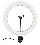 Кольцевая LED лампа 38 см A390 с пультом | Светодиодная селфи лампа  + Штатив В Подарок, фото 2