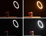 Кольцевая LED лампа 38 см A390 с пультом | Светодиодная селфи лампа  + Штатив В Подарок, фото 8
