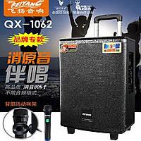 Портативная Акустическая система Temeisheng QX-1062