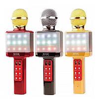 Микрофон DM Karaoke WS 1828 с подсветкой