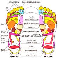 Массажные тапочки Massage Slipper (Размер 38/39)