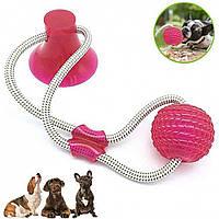 Игрушка для домашних животных с присоской, Dog toy rope PULL