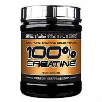 Моногидрат креатина для набора массы Scitec Nutrition Creatine 100% Pure - 500 гр