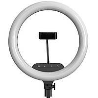Кольцевая LED лампа с пультом ДУ и держателем для телефона AL-360 (36 см)