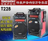 Мультимедиа активная караоке стереосистема Temeisheng T228 код T228