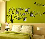 Декоративная  наклейка стикер Семейное дерево с фоторамками  (250х180см), фото 3