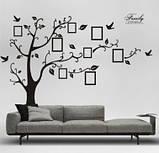 Декоративная  наклейка стикер Семейное дерево с фоторамками  (250х180см), фото 4