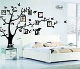Декоративная  наклейка стикер Семейное дерево с фоторамками  (250х180см), фото 6