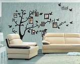 Декоративная  наклейка стикер Семейное дерево с фоторамками  (250х180см), фото 7